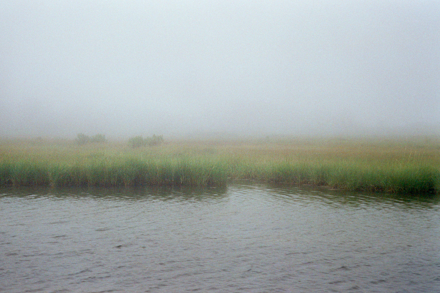 Madaket fog Nantucket