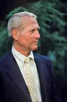 Paul Newman Cambridge MA